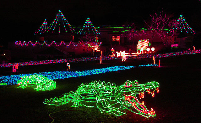 - Oregon Families Prepare For Zoo Lights €� The Charter