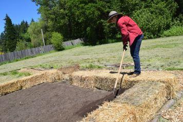 Alex Farnham rakes smooth the freshly added soil mix.